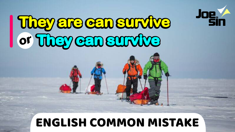 They Are Can Survive   They Can Survive   English Common Mistake   Joesin